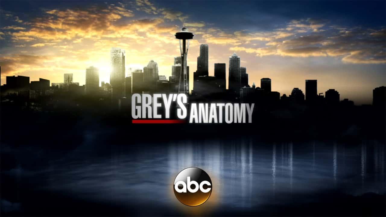 Greys-Anatomy-Set