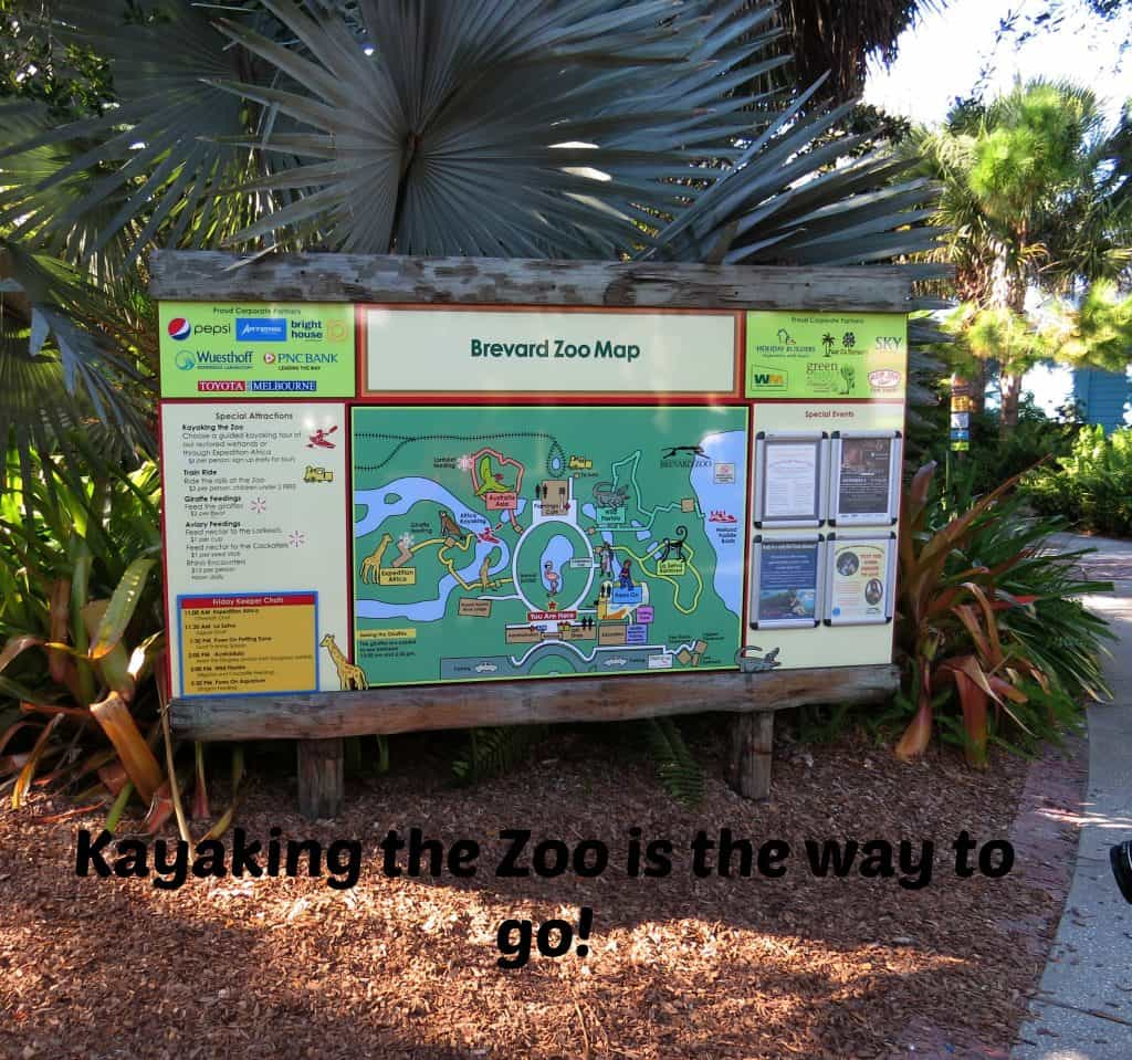 Brevard-County-Zoo