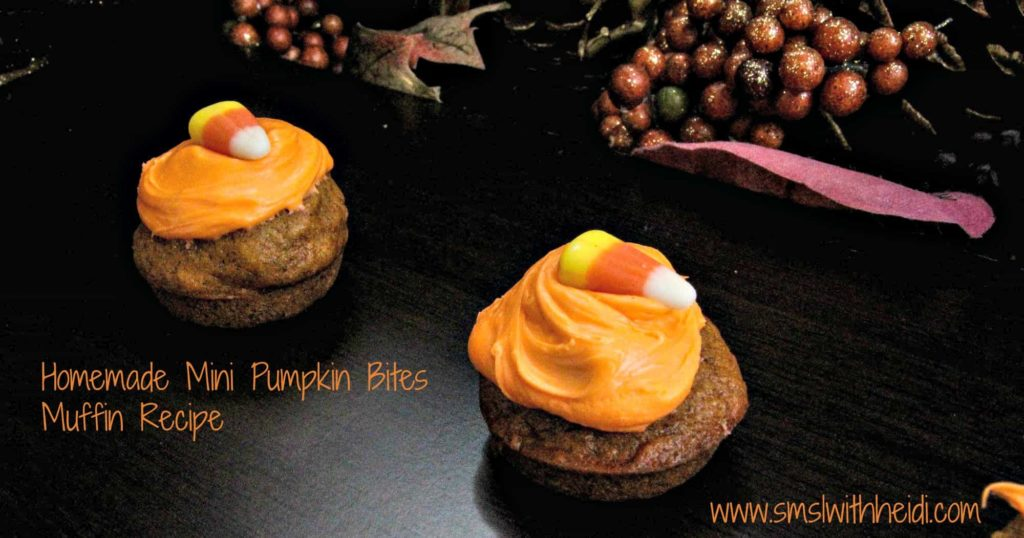 Homemade Mini Pumpkin Bites Recipe